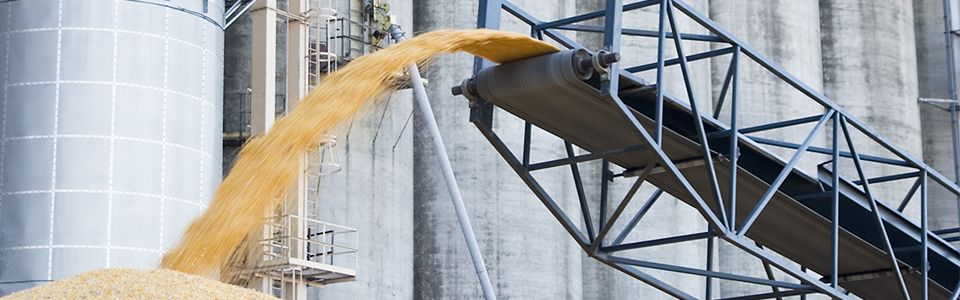 Grain Conveyer-belt